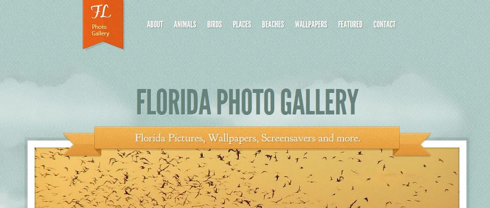 Photo Gallery Website Redesign