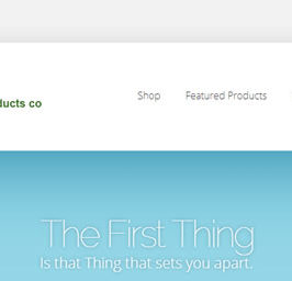 Latest Work – E-Commerce Example