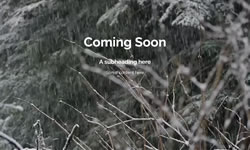 th_video_snowforest-overlay